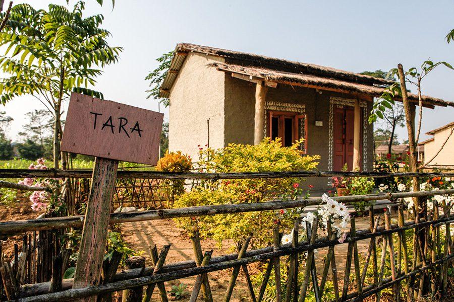 Community Homestay Chitwan Barauli