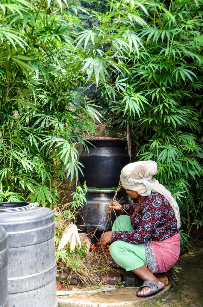 Alcohol Brewing Nepal
