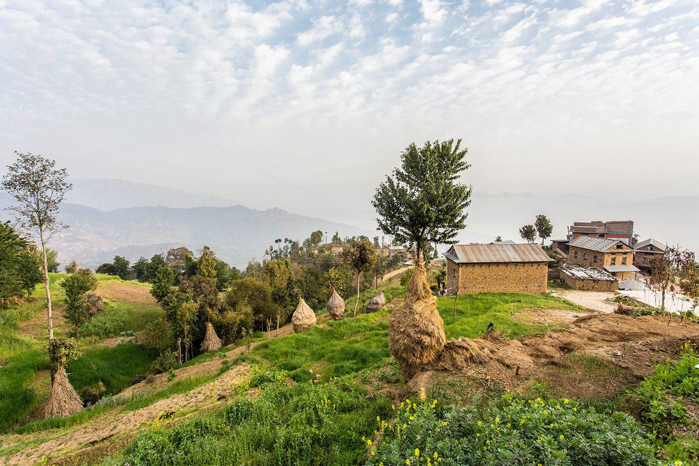 Paklekhet Community Homestay: Village of milk and honey