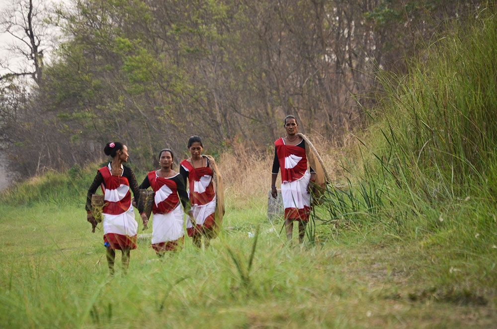 Indigenous to Chitwan, Tharu Women going for fishing in genuine style.