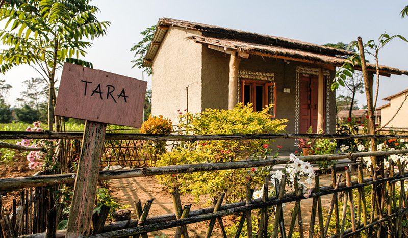 Tharu styled huts in Barauli Community Homestay. Photo: Tashi Sherpa