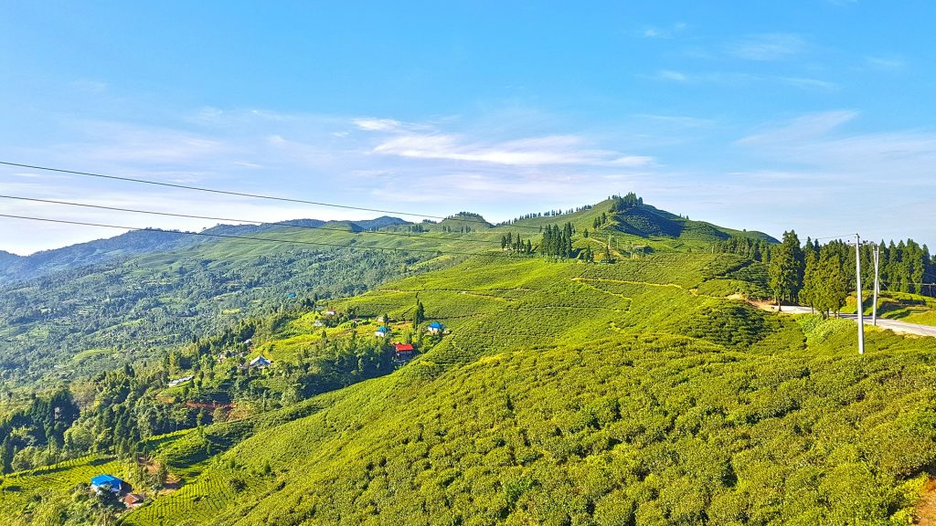 Photo credit: Raju Bhattarai from Pixabay